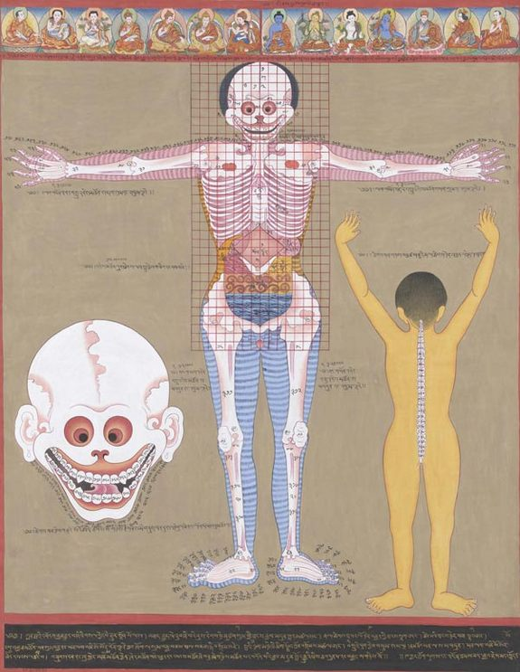 tibetan-medicine-anatomy2-110128-02